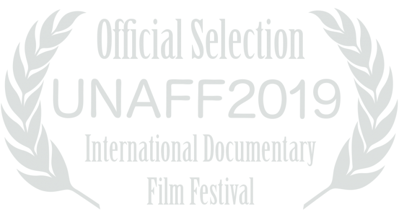United Nations Association Film Festival 2019